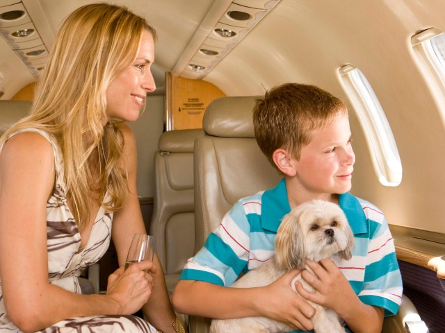 How to Do San Francisco with Your Pet An On-Demand Private Jet Charter and Pet-Friendly Restaurants