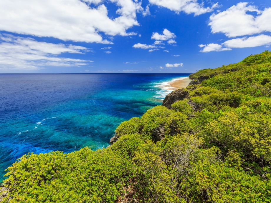 Niue Private Jet Charter