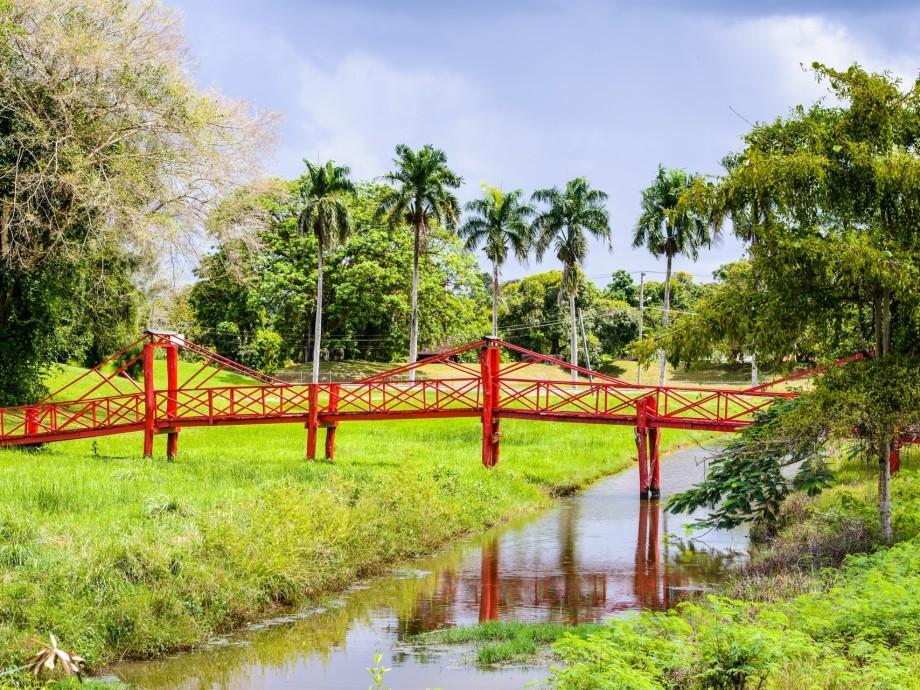 Suriname Private Jet Charter